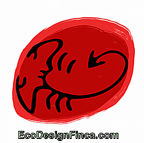 Horoscope du mois - Signe Scorpion