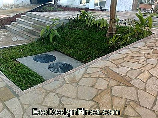 picture of stone pavement in goiania stone