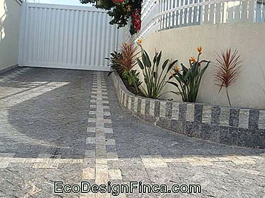 sidewalk with mosaic of miracema stone