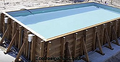 piscine rectangulaire simple