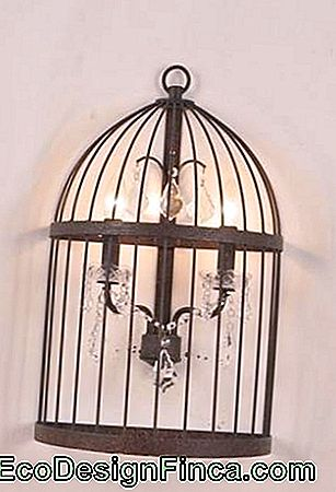 cage-decorative-19