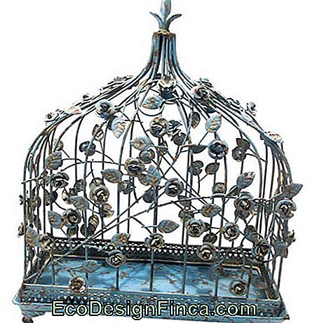 Decorative cage-20