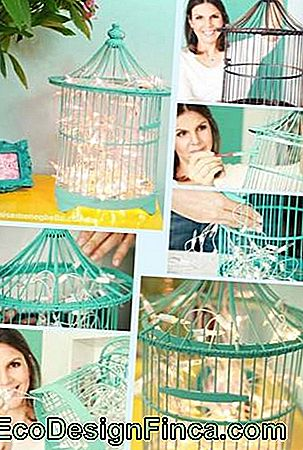 Decorative cage-3