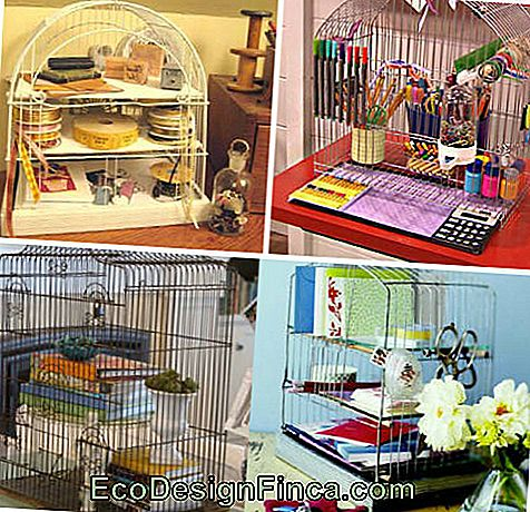 Decorative cage-6