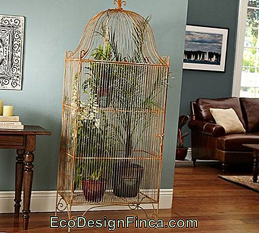 Decorative cage-12