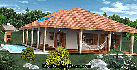 project house with terrace