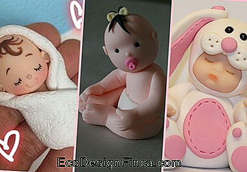 Baby biscuit inspirations