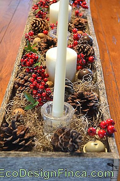 Christmas Table Decorations - 50 Awesome Ideas & hoe het te doen!: decorations