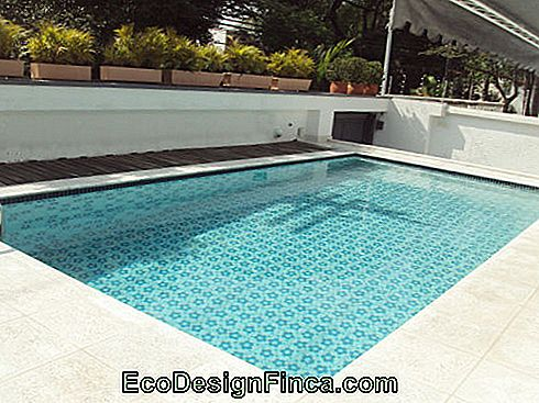 swimming pool with printed floor