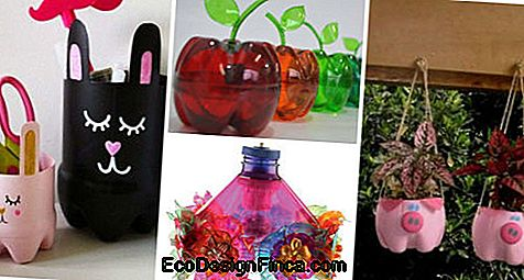 Pet Bottle Crafts: 76 Geweldige Ideeën En Tutorials!