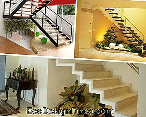 Under-Stair Decor - 70 idee creative e moderne!: scale