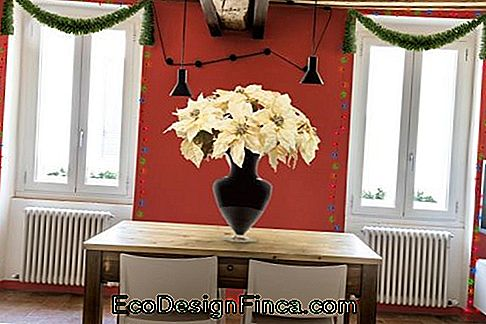 christmas decoration dining room