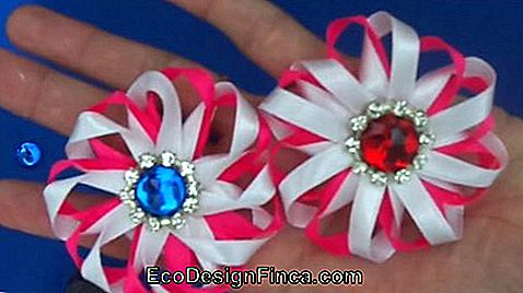 Satin flower: Thin pink and white