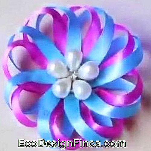 Satin flower: Thin blue and lilac