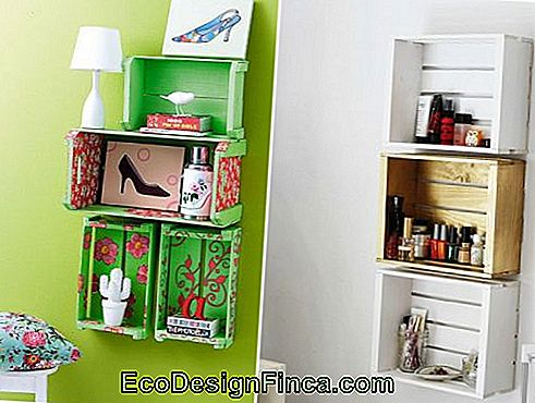 nicchie con-box-to-quarto