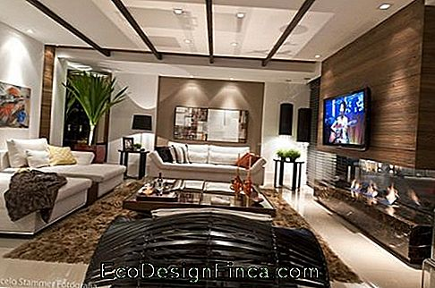 decorated tv room