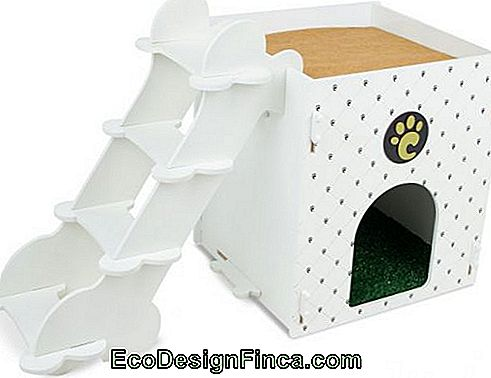 house-for-cats-MDF-10