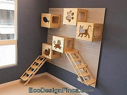 house-for-cats-MDF-ideeën
