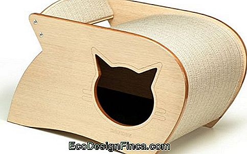 house-for-cats-MDF-mooi-mooi