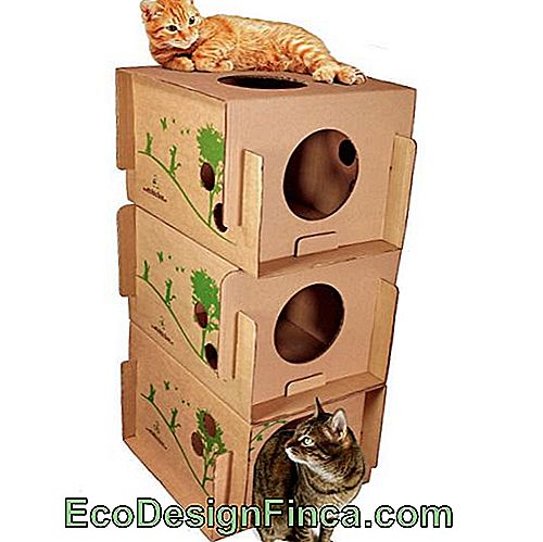 house-for-cats-MDF-shelf
