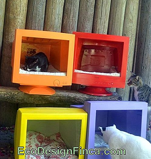 house-for-cats-recycled-6