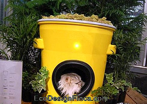 house-for-cats-recycled-9