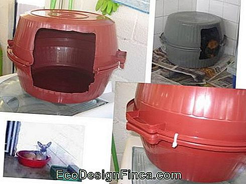 house-for-cats-as gerecycled en