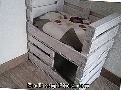 house-for-cats-recycled-of-pallet