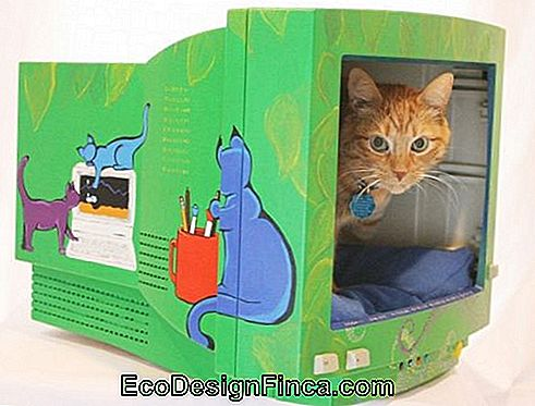 house-for-cats-recycled-versierde
