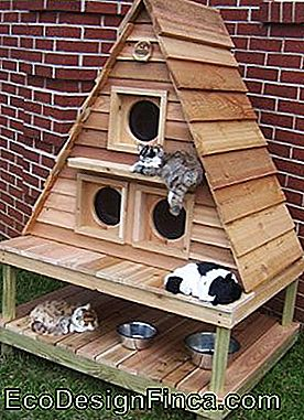 house-for-cats-wood-3