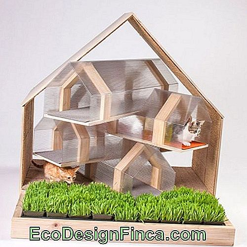 house-for-cats-wood-6