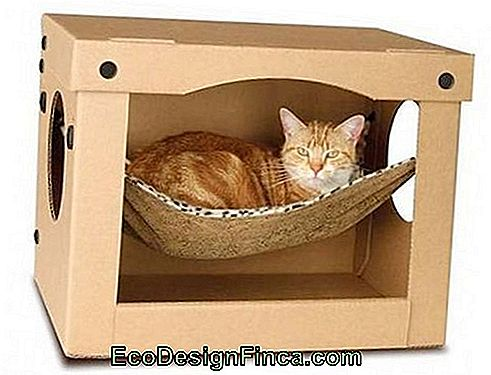 house-for-cats-MDF-4