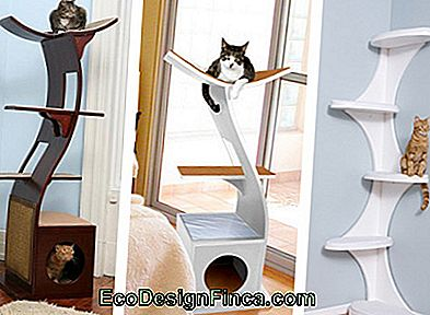 house-for-cats-MDF-8