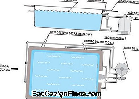 swimmingpool design