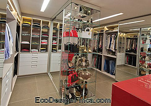 showroom decoration CENTRAL