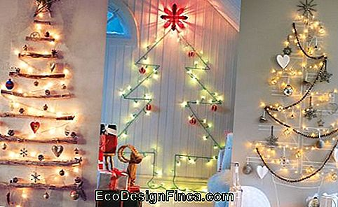 decoratie-met-flasher-tree-of-natal