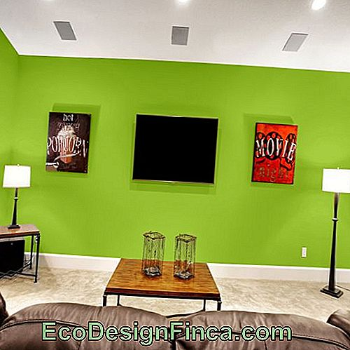 Decoreren met Green Wall - 65 Awesome Environments & Tonal Tips!: tonal