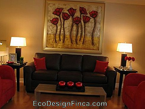 décor-rouge-sofa-marron