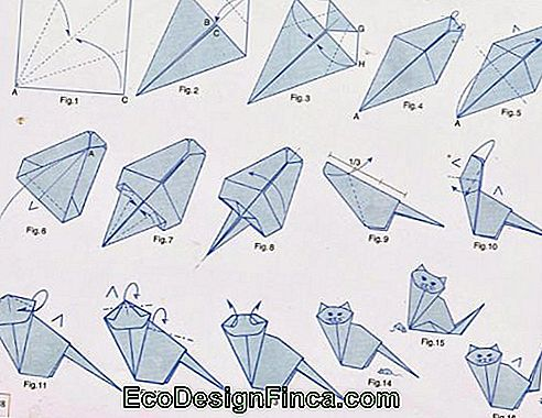 Step by Step gattino origami
