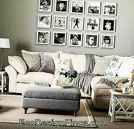 room with gray walls and white sofa.