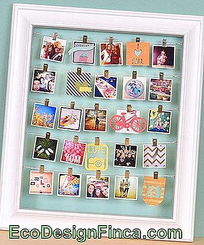 picture frame photo holder.