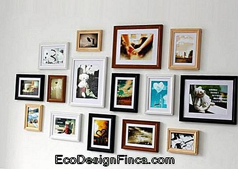 15 black, brown and white picture frames on clean wall.