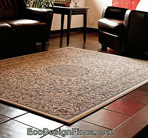 tapis-belgium-in-decor