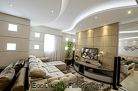 modern decorated room
