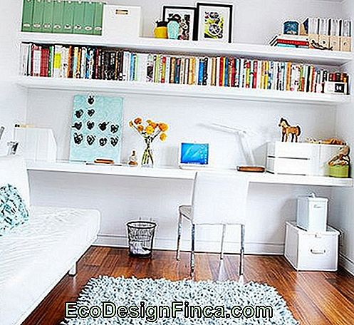 shelf-de-pleister-to-book-8