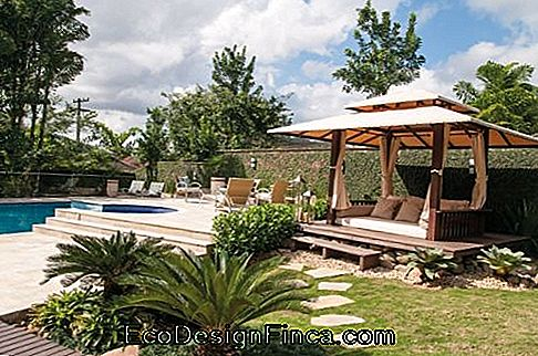 pool with gazebo