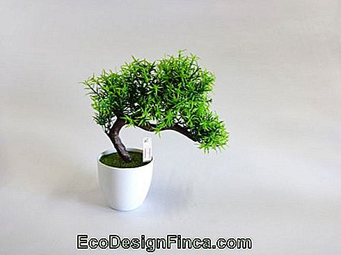 Albero artificiale - mini-piccolo bonsai