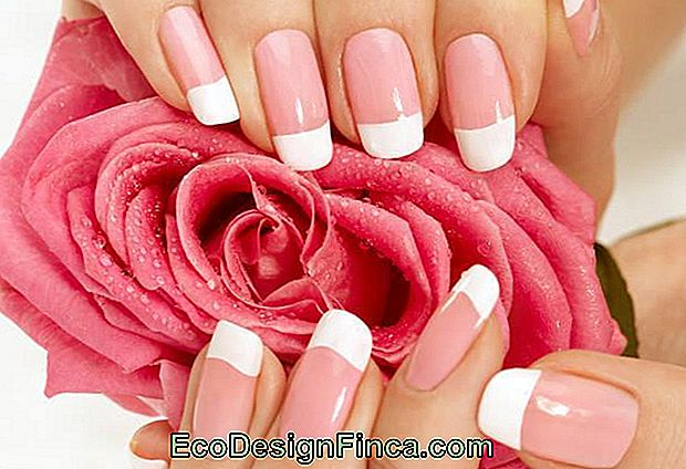 Types De Faux Ongles