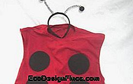 Fancy Carnival Costume for Girl: Ladybug...