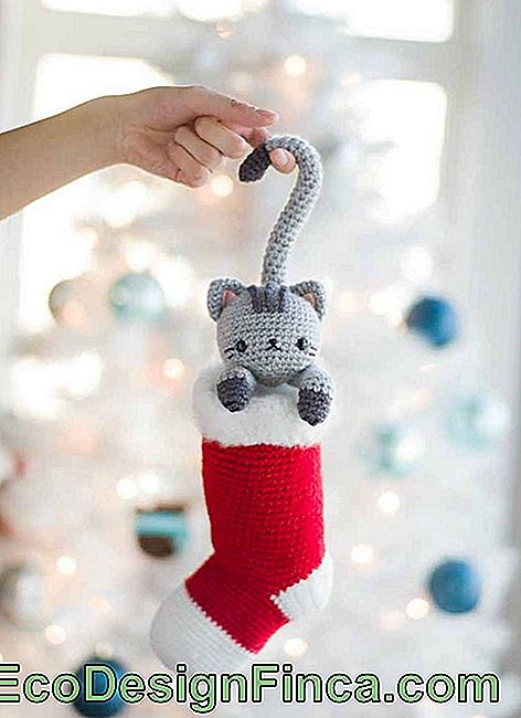 Kitten in stocking to decorate Christmas tree